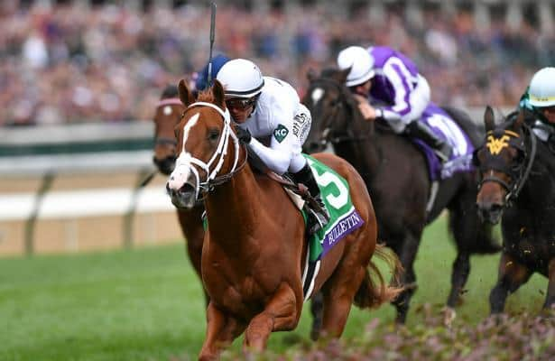 How Horse Racing Works And What Is Horse Racing Replays?