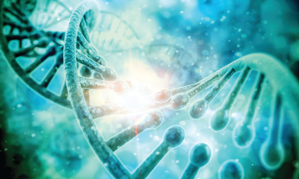 Why Genetic Testing is Important