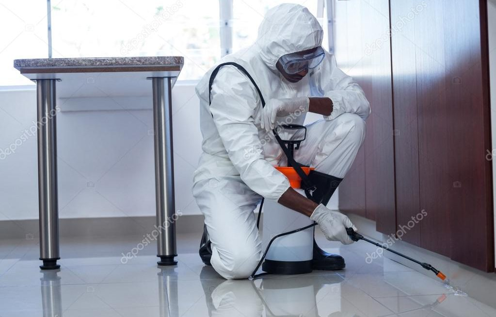 Helpful Tips For Getting Rid Of The Pests In Your Home Fast